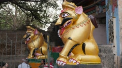 Golden lion statue at entrance of Lingaraja temple,Bhubaneswar,India Stock Footage