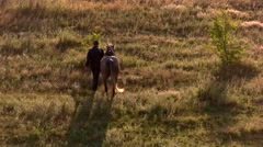 Man is leading a horse. Stock Footage