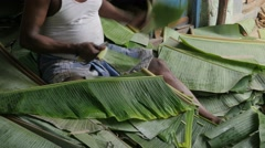 Cutting of banana leafs used as plates,Chennai,India Stock Footage