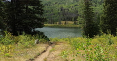 Mountain valley lake hiking trail DCI 4K Stock Footage