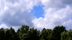 Time lapse of white cumulus clouds moving over green trees Stock Footage