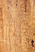 Pinewood Texture Closeup Stock Photos