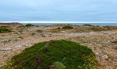 Atlantic ocean coast view (Algarve, Portugal). Stock Photos