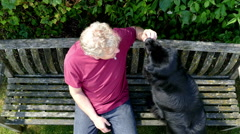 Overhead shot of man giving treat to Newfoundland dog. Stock Footage