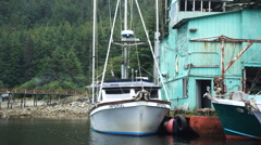 POV from boat motoring slowly past boathouse boats dock Elfin Cove AK Stock Footage
