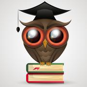 Academic Owl vector Stock Illustration