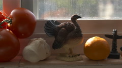 The Window Sill Above the Kitchen Sink Stock Footage