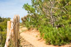 Wooden fence on Atlantic beach in France Stock Photos