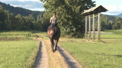 Young happy woman relaxing in nature and riding her dark brown stallion horse Stock Footage
