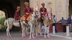 Richly decorated horses with riders with turban,Jaipur,Gangaur,India Stock Footage