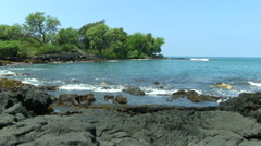 Gentle Waves On Black Lava Rock Shore With Trees In Background Stock Footage