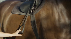 SLOW MOTION CLOSE UP: Woman running down a stirrup on saddled horse Stock Footage