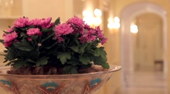 Pink fresh flowers in a large vase with ornaments Stock Footage