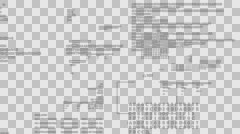 Alpha Digital Text flying.Running code text. Stock Footage