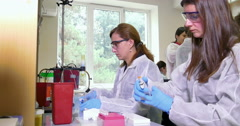 Scientist working at the laboratory Stock Footage