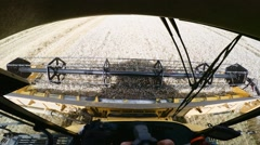 Farmer yellov combine harvester on field Stock Footage