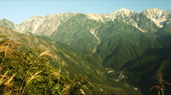 Silver grass and Hakuba mountains Stock Footage