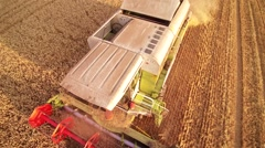 Aerial view combine harvested wheat field Stock Footage