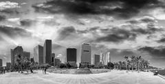 Black and white view of Bayfront Park and buildings in Downtown Miami - Flori Stock Photos