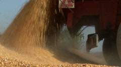 Tractor dumping corn dolly shot Stock Footage