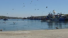 Sines fishing harbor with fishing boats and seagulls slow motion 120fps Stock Footage