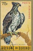 BURUNDI - CIRCA 1970: stamp printed by Burundi, showing Martial Eagle Stock Photos