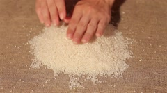 Rice smooth out on burlap. harvesting. smooth out hands Stock Footage