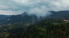 Steamy forest landscape aerial panorama Stock Footage