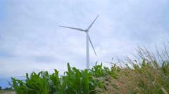 Wind generators in corn field. Wind turbine farm. Wind turbine Stock Footage