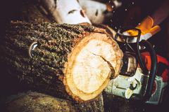 Wood Log Cut by Gasoline Wood Cutter. Closeup Photo. Forestry Works. Stock Photos