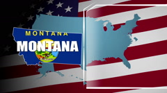 Montana Countered Flag and Information Panel Stock Footage