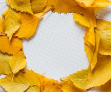 Autumn leaves in circle frame with place for your text isolated Stock Photos