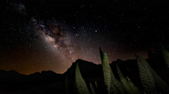 4K Time Lapse Milky Way Rocks Flowers Tenerife Canary Islands Spain Stock Footage