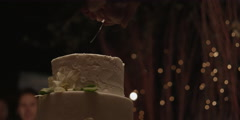 Couple cutting a wedding cake Stock Footage