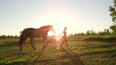 CLOSE UP: Young woman walking with her stallion horse on meadow field at sunset Stock Footage