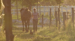 SLOW MOTION: Young woman leading a horse from field into barn at golden sunset Stock Footage