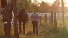 SLOW MOTION: Young woman leading a horse by the reins and petting him on sunset Stock Footage