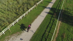 AERIAL: Female rider horseback riding strong gelding on beautiful sunny day Stock Footage
