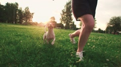 Jack Russell Terrier dog next to a girl happily running through the grass in the Stock Footage
