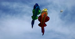 Red and blue fish, fish kites playing in the air, Kite festival Stock Footage