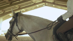 The girl rides a horse at the indoor arena close-up Stock Footage