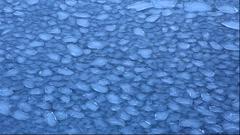 Lotus leaf ice Stock Footage