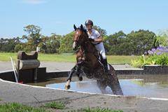 Horse Rider Crossing Water in Equestrian Event Stock Photos