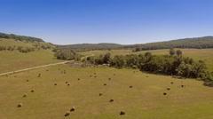 Golden hay bail harvesting in field landscape Stock Footage