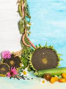 Vertical bright still life with vegetables Stock Photos