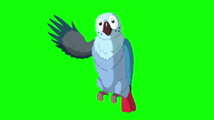 Blue Parrot Greets. Classic Disney Style Animation Stock Footage