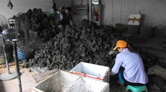Seafood market, a woman picking oysters Stock Footage