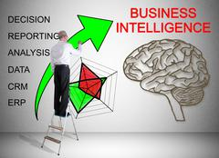 Business intelligence concept drawn by a man on a ladder Stock Photos