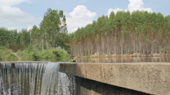 Water fall from little damp Stock Footage