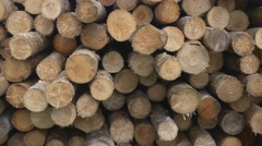 Sawed timber in the warehouse Stock Footage
